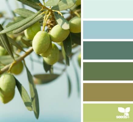сочетание оливкого цвета в кухне